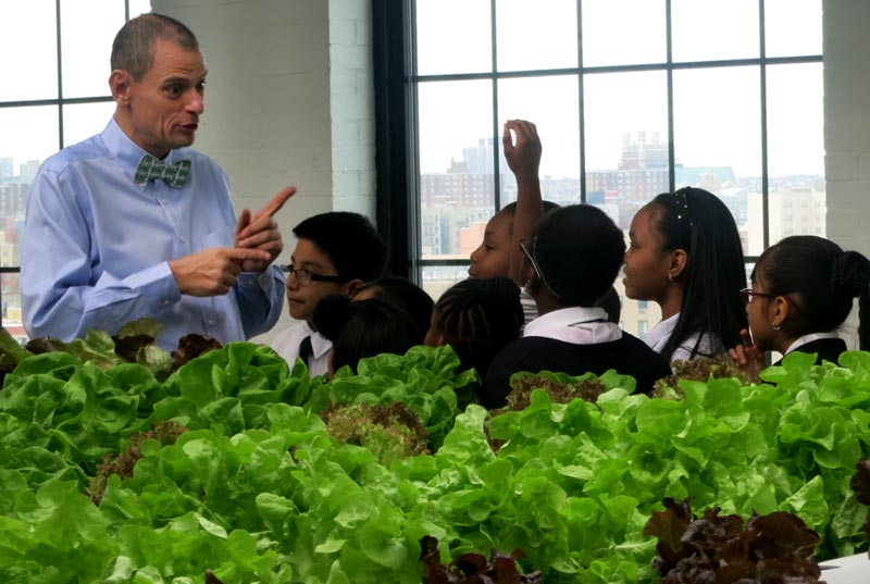 Stephen Ritz is the Founder of Green Bronx Machine and self-proclaimed CEO – Chief Eternal Optimist – of Bronx County.