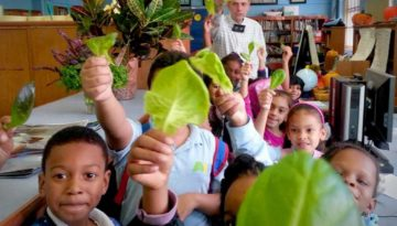 StephenRitz-classroom-lettuce-children