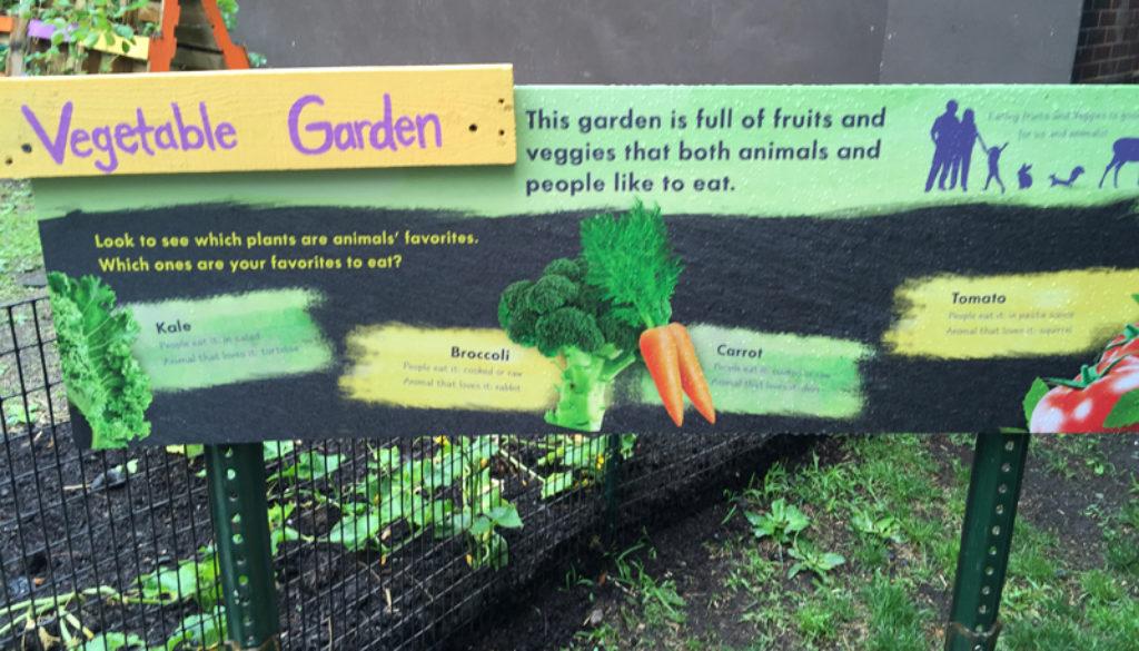 Bronx-Zoo-Farm-16-web