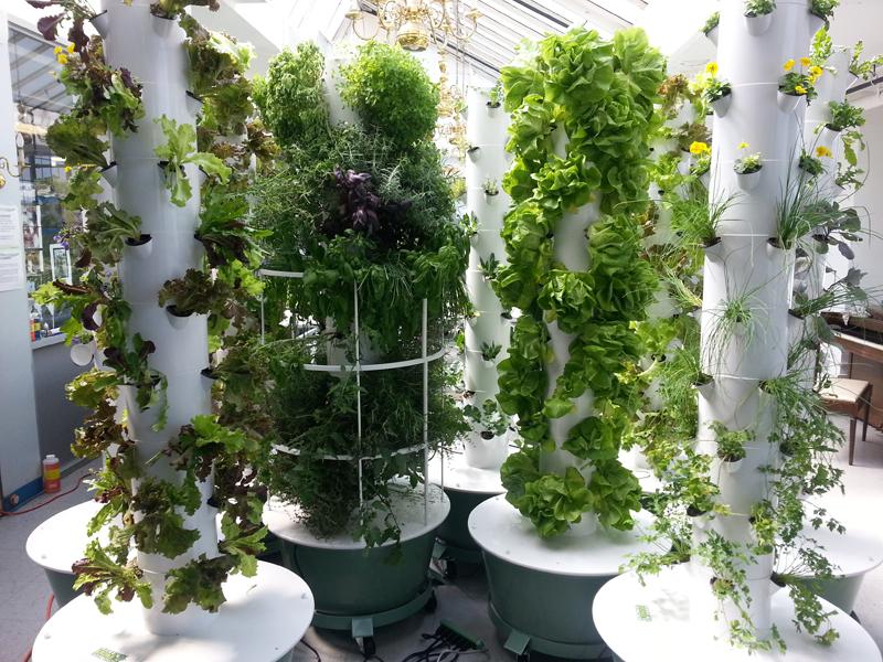 green bronx machine tower garden