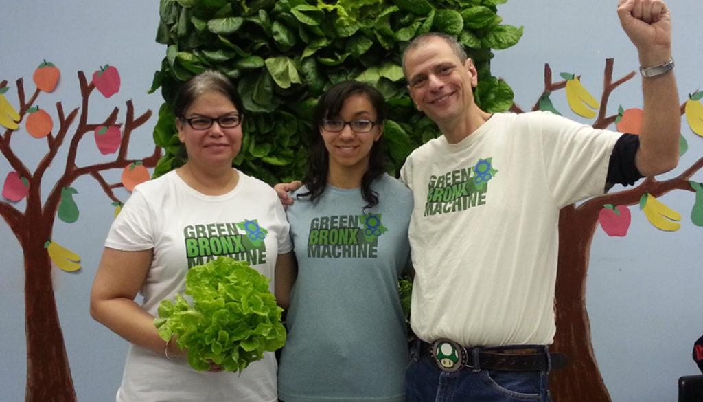 Our-Incredible-Edible-Wall-01-web