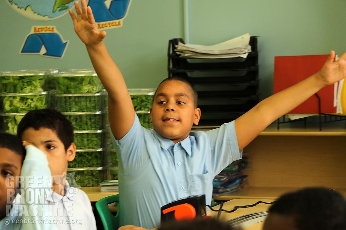 Enthusiastic student raising his hands