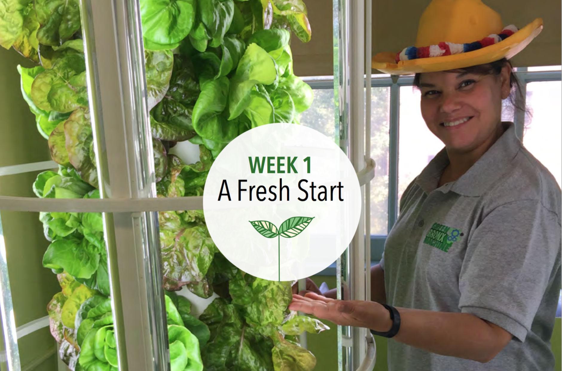 Week 1: A Fresh Start