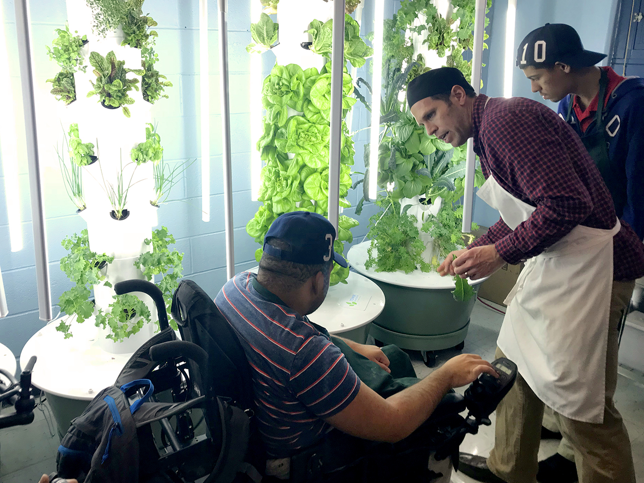 Green Bronx Machine designed, built, and continues to support the first year-round, wheelchair-accessible urban farm and culinary training kitchen in the nation. Modeled after The National Health, Wellness