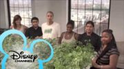 The Disney Channel: Pass the Plate
